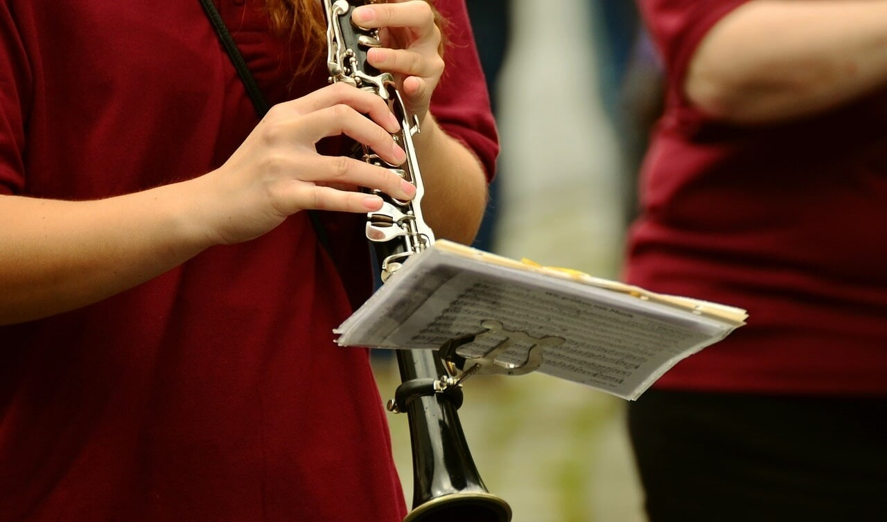 Tipos de clarinete y sus características